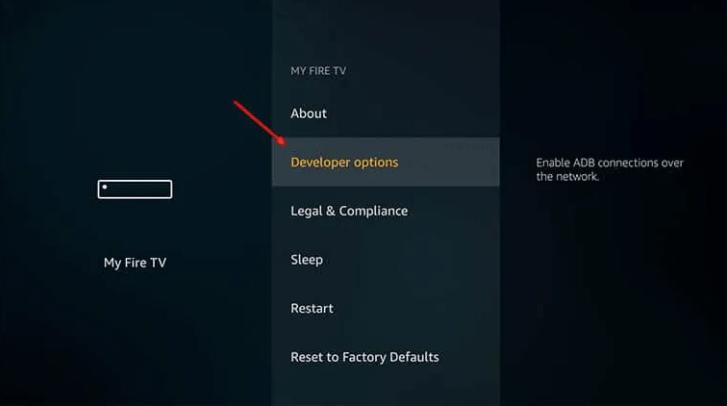 firestick downloader option