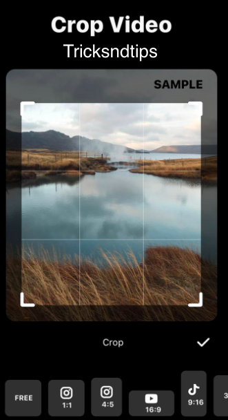 images of Ratio & Background