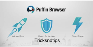 What is Puffin Browser Pro Apk?